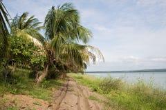 Tiefe Sandstraße in Mosambik Stockfotografie