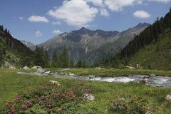 Tiefental Valley  Austria  Tirol  Kaunergrat Stock Photos
