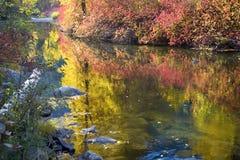 Tiefer Fall färbt Wenatchee Fluss Washin Lizenzfreie Stockfotos