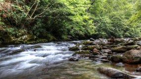 Tiefer Nebenfluss-rauchige Berge stockbilder