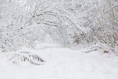Tiefer Schnee Lizenzfreie Stockfotos
