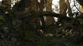 Tiefer Wald Lizenzfreies Stockbild