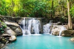 Tiefer Wald des Wasserfalls szenisch Lizenzfreie Stockfotografie