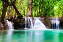 Tiefer Wald des Wasserfalls weich szenisch Stockfotografie