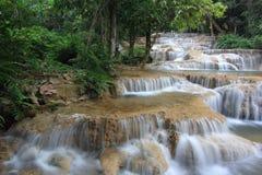 Tiefer Waldwasserfall stockbilder