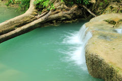 Tiefer Waldwasserfall Lizenzfreies Stockbild