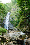 Tiefer Waldwasserfall Stockfotografie