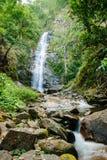 Tiefer Waldwasserfall Stockbild