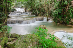 Tiefer Waldwasserfall in Kanchanaburi Stockfotografie