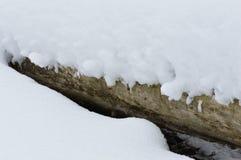 Tiefer weißer Schnee bedeckte einen gefallenen Baum Lizenzfreies Stockbild