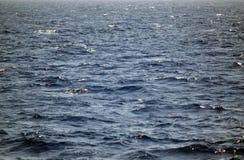 Tiefes blaues Wasser in den Karibischen Meeren Stockfotografie