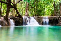 Tiefes Waldweich szenisches natürliches des Wasserfalls Stockbild