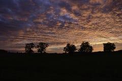 Tiefroter farbiger Himmel Stockbild