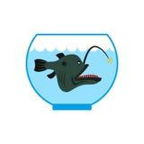 Tiefseefische im Aquarium Schrecklicher Anglerfish in der Gefangenschaft P vektor abbildung