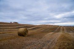 Tiempo de cosecha canadiense de la acción de gracias Hay Bale Fotos de archivo libres de regalías