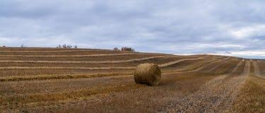 Tiempo de cosecha canadiense de la acción de gracias Hay Bale Imagenes de archivo