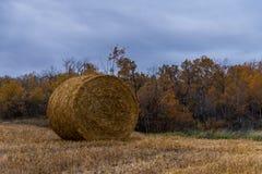 Tiempo de cosecha canadiense de la acción de gracias Hay Bale Fotografía de archivo