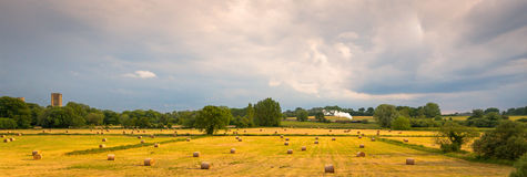 Tiempo de cosecha en el valle de Tiffey Imagen de archivo