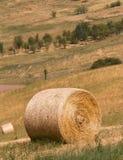 Tiempo de cosecha: paisaje agrícola con la bala de heno Imágenes de archivo libres de regalías