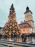 Tiempo de la Navidad en Rumania La belleza de una del árbol de navidad más alto del país imágenes de archivo libres de regalías