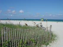 Tiempo de la playa Foto de archivo libre de regalías