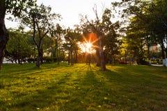 Tiempo de la puesta del sol en el parque de la ciudad Imagen de archivo libre de regalías