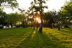 Tiempo de la puesta del sol en el parque de la ciudad Fotografía de archivo