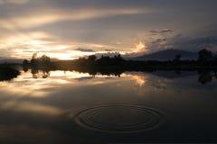 Tiempo de la tarde en el campo del arroz en Tailandia Imagen de archivo