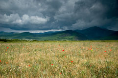 Tiempo de la tempestad de truenos con las nubes dramáticas Imagen de archivo