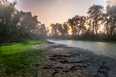 Tiempo de mañana misterioso en área del pantano Imágenes de archivo libres de regalías