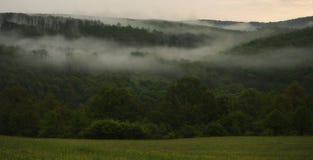 Tiempo de niebla en naturaleza Imágenes de archivo libres de regalías