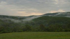Tiempo de niebla en naturaleza Imagen de archivo libre de regalías