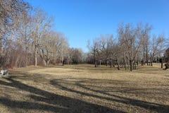 Tiempo de primavera en el parque Foto de archivo libre de regalías