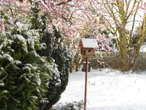 Tiempo de primavera en Strande Fotos de archivo