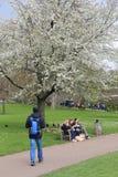 Tiempo de primavera de Londres Fotos de archivo libres de regalías