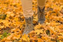 Tiempo de relajación del otoño imagenes de archivo