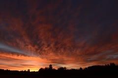 Tiempo de verano antes del cielo del amanecer de la mañana de la salida del sol sobre el bosque Foto de archivo libre de regalías