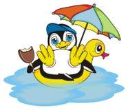 Tiempo de verano para el pingüino fresco Imágenes de archivo libres de regalías