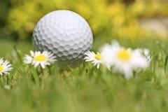 Tiempo del golf Imagen de archivo libre de regalías