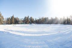 Tiempo del invierno en bosque Fotografía de archivo