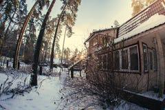 Tiempo del invierno en bosque Fotos de archivo libres de regalías