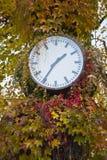 Tiempo del otoño Fotos de archivo libres de regalías