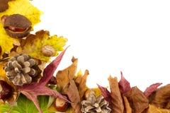 Tiempo del otoño Imagenes de archivo