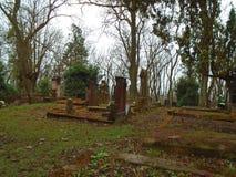 Tiempo del otoño en el cementerio judío abandonado y registrado viejo Imagen de archivo libre de regalías