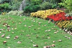 Tiempo del otoño en el jardín Imagen de archivo