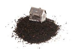 Tiempo del té. Foto de archivo