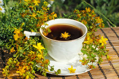Tiempo del té de hierba fotos de archivo libres de regalías
