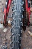 Bicicleta del neumático Fotos de archivo libres de regalías