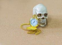 Tiempo, muerte, cráneo, reloj, extremo Fotos de archivo libres de regalías