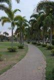 Tiempo a relajado, opinión del parque Imagenes de archivo
